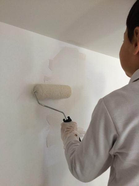 漆喰塗料(フェザーフィール)のDIY塗り(兵庫県 全面リノベーション)