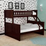 Buy Antonia Bunk Bed Single Queen In Wenge Finish By Casacraft Online Standard Bunk Beds Bunk Beds Kids Furniture Pepperfry Product