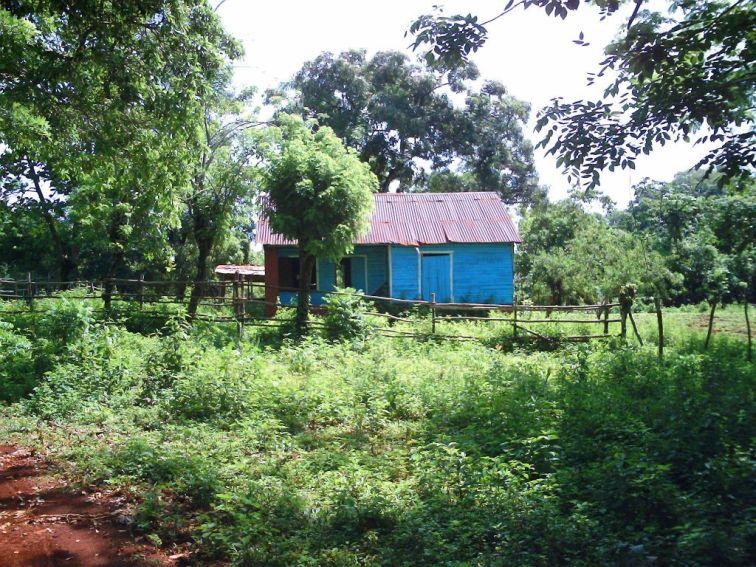 IIC Sosua Location Dominican countryside