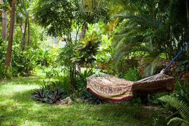 IIC Sosua Language School Garden