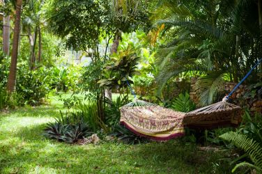 IIC Sosua Language School Garden