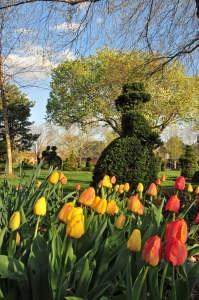 Topiary Park