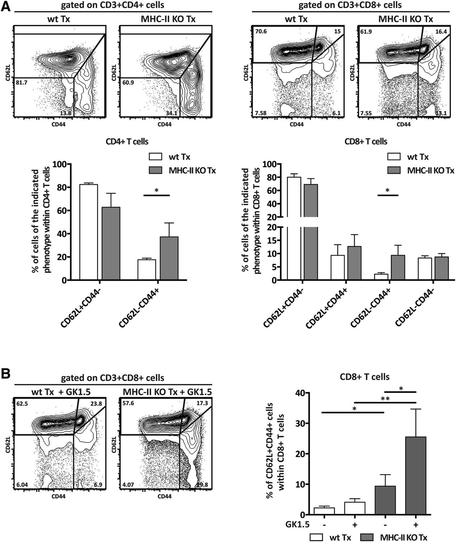 Lymph Node Stromal Cells Constrain Immunity Via Mhc Class
