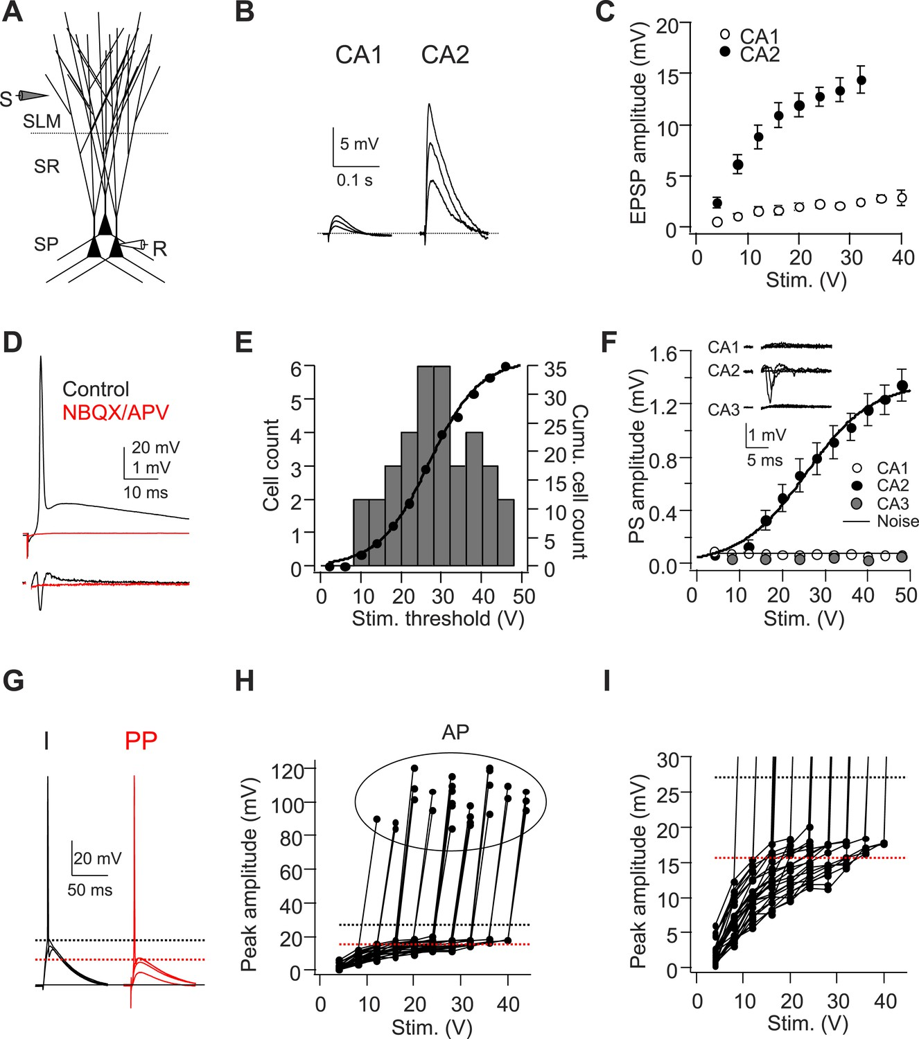 Figures And Data In Dendritic Na Spikes Enable Cortical