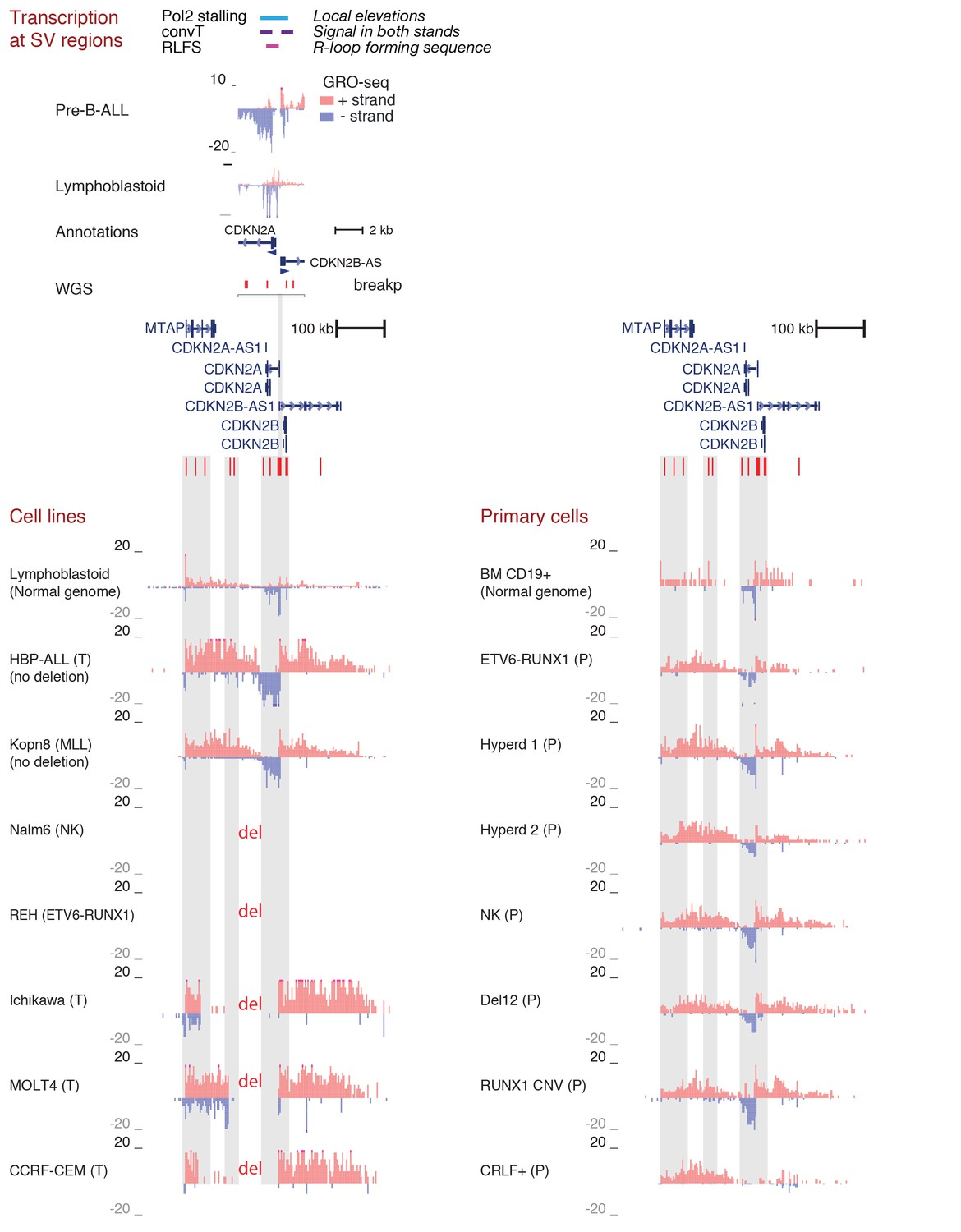 Figures And Data In Transcription Coupled Genetic