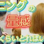【超わかりやすいセニングの入れ方】ボブでおすすめのすきバサミで毛量調整・質感調整・削ぎの方法。美容師ヘアカット動画