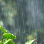 土嚢袋水で膨らむ土のいらない吸水タイプ|大雨や浸水に備えたい人に