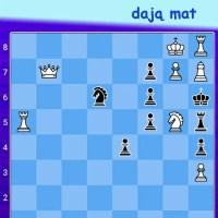 zagadka szachowa 10