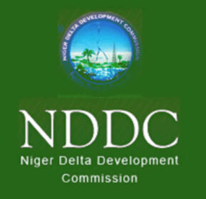 OPINION: Assessing NDDC Forensic Audit Report