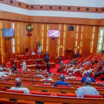 Senate Rejects Move To Upgrade Medical Facilities In Adamawa