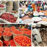 USAID Launches $3m Grant To Support Food Security In Nigeria