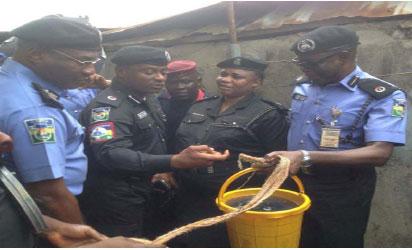 Lagos state Commissioner of Police, Fatai Owoseni; Commander, RRS, ACP  Olatunji Disu; DPO Ilasamaja , SP Oriyomi Titilayo Oluwasanmi and Area Commander 'D', ACP Salisu Gyadigya, inspecting the diesel from one of the  wells . pix by Evelyn Usman