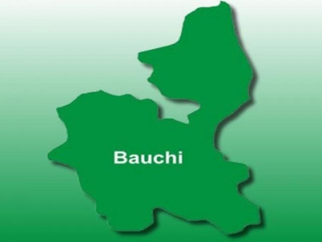 bauchi1