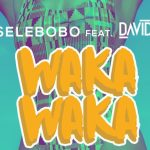 [Audio] : Selebobo Ft. Davido – Waka Waka