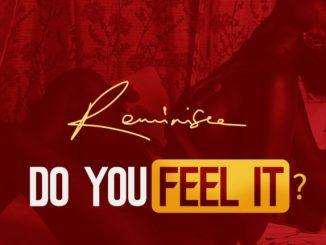Reminisce - Do You Feel It?