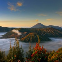 BROMO-IJEN BLUE FIRE 3D/2N DROP OF SURABAYA