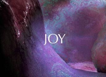 AC Berkheimer – Joy
