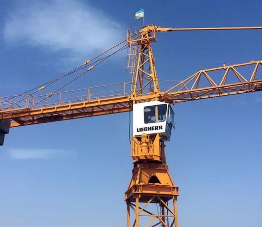 Tower Crane Erector