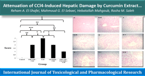 Attenuation of CCl4-Induced Hepatic Damage by Curcumin Extract and/or Folic Acid