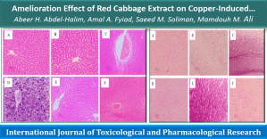 Amelioration Effect of Red Cabbage Extract on Copper-Induced Hepatotoxicity and Neurotoxicity in Experimental Animals