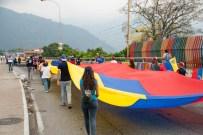 Caminata Banderas por la Democracia #14A – Mérida | iJustSaidIt