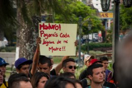 Marcha en Plaza Glorias Patrias -José José Limongi | iJustSaidIt