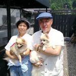 神奈川県からお越しのご夫婦です吉野街道を走っていてたまたまお立ち寄り下さいましたワンちゃんは #ポメラニアン のモナちゃん&蓮くんです。とっても元気な2匹でした🐕🐕 ご来店ありがとうございましたhttp://ikadamitake.com 営業時間11~17時(夏季)木曜定休(祭日は営業)#炭鳥 #蔵 #筏 #ikada #mitake #tokyo #御岳 #御岳山 #mitakesan #御岳山ロックガーデン #武蔵御嶽神社 #多摩川 #御岳渓谷 #御岳ランチ #奥多摩フィッシングセンター #奥多摩 #ブドウ山椒 #おにぎり #味玉 #バイク #ロードバイク #カヌー #カヤック #リバーSUP #アルパインクライミング #デッドエンド #ジムニー #ペット可