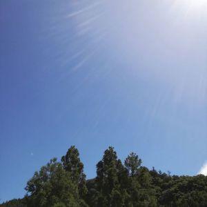 低気圧の翌日の高気圧、今日は空気が乾燥して爽やかな晴天の御岳です️ http://ikadamitake.com 営業時間11~17時(夏季)木曜定休(祭日は営業)※むかし鳥、ばくだんは数に限りがございます。1個からお取り置き致します♪Tel.0428-85-8726#炭鳥 #蔵 #筏 #ikada #むかし鳥 #mitake #tokyo #御岳 #御岳山 #御岳山ロックガーデン #武蔵御嶽神社 #多摩川 #御岳渓谷 #ランチ #奥多摩フィッシングセンター #奥多摩 #日原鍾乳洞 #味玉 #ロードバイク #カヌー #カヤック #リバーSUP #ラフティング #デッドエンド #ペット可
