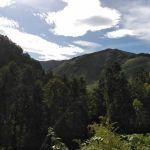 まだまだ昼間は暑いし朝顔も咲いていますが、朝晩涼しくなり秋を感じています🙂秋は空が高くて山の標高も高く見えます🏞️ http://ikadamitake.com営業時間11~17時(夏季)木曜定休(祭日は営業)※むかし鳥、ばくだんは数に限りがございます。1個からお取り置き致します♪Tel.0428-85-8726#炭鳥 #蔵 #筏 #ikada #むかし鳥 #mitake #tokyo #御岳 #御岳山 #御岳山ロックガーデン #武蔵御嶽神社 #多摩川 #御岳渓谷 #御岳ランチ #奥多摩フィッシングセンター #奥多摩 #日原鍾乳洞 #味玉 #バイク #ロードバイク #カヌー #カヤック #リバーSUP #ラフティング #デッドエンド #ペット可