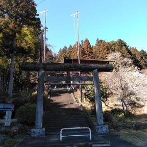 """今日は、御岳の隣・沢井にある、青渭神社・里宮へお参りして来ました。青渭(あおい)神社の元々のお宮(奥宮)は惣岳山にあります。惣岳山は、気軽に縦走出来る人気の山""""高水三山""""のうちの一つであり、以前はそこを通る心無い人が神社で焚き火やいたずら書きなどした為に、残念ながら今では神社の中には入れない様に金網で囲ってあります。私は、以前高水三山を歩いた時にその金網のあまりの物々しさにびっくりしたのですが、理由を知れば、残念ながら仕方のない事の様に思えます。しかし、里宮は宮司さんもすぐ横に住んでおられ(御朱印もご在宅であればそちらで拝受出来るそうです)、拝殿の扉は開かれ灯りもついています。惣岳山は標高756mですが、奥宮まで登山しなくても山麓にある里宮で気軽にお参り出来ます。1枚目、入口の二の鳥居。右手に車が2〜3台停められそうなスペースがありました。2枚目、手水舎は下が池になっていて風情があります。3枚目、狛犬。向かって右手は親子です。4枚目、拝殿 と 5枚目、拝殿の扁額6枚目、境内の白梅 と 7枚目、桜近々、店主が奥宮へ行く予定なので、その様子もpostします♪青渭神社・里宮東京都青梅市沢井3丁目639#青渭神社 #惣岳山 #高水三山"""