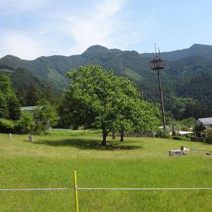ブドウ山椒畑の電気柵越しに眺める、今朝の #惣岳山青空に特徴的な山の形が映えてます🤗http://ikadamitake.com営業時間・4月〜12月 11〜17時1月〜3月 11〜16時金曜定休(祭日は営業)※むかし鳥、ばくだんは数に限りがございます。1個からお取り置き致します♪Tel.0428-85-8726#むかし鳥 #体験型 #炭鳥ikada #ばくだん #mitake #御岳 #御嶽駅 #御岳山 #御岳山ロックガーデン #武蔵御嶽神社 #御岳神社 #御岳渓谷 #東京アドベンチャーライン #御岳ランチ #奥多摩フィッシングセンター #奥多摩 #日原鍾乳洞 #イマタマ #バイク #ロードバイク #サイクリング #カヌー #カヤック #ラフティング #riversup #デッドエンド #ペット可