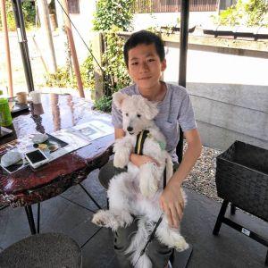 """渋谷区からお越しのご家族・3名様です実は最初にお越し頂いた時に満席だったのですが、とても有難い事に出直して下さったのです🤗息子さんと一緒に写ってくれたのは、スピッツとトイプードルの #MIX犬 #スピプー の""""サクくん""""9ヶ月♂ですトイプーにしては大きいのでどんな犬種かしらと思っていましたスピプーくんのご来店は初めてです真っ白で可愛いですねご来店ありがとうございましたhttp://ikadamitake.com営業時間・4月〜12月 11〜17時1月〜3月 11〜16時金曜定休(祭日は営業)※むかし鳥、ばくだんは数に限りがございます。1個からお取り置き致します♪Tel.0428-85-8726#むかし鳥 #体験型 #炭鳥ikada #ばくだん #mitake #御岳 #御嶽駅 #御岳山 #御岳山ロックガーデン #武蔵御嶽神社 #御岳神社 #御岳渓谷 #御岳ランチ #奥多摩フィッシングセンター #奥多摩 #日原鍾乳洞 #奥多摩湖 #バイク #ロードバイク #サイクリング #カヌー #カヤック #ラフティング #riversup #ラフティング #御岳ボルダー #ペット可"""