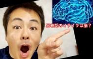思春期のイライラ 脳