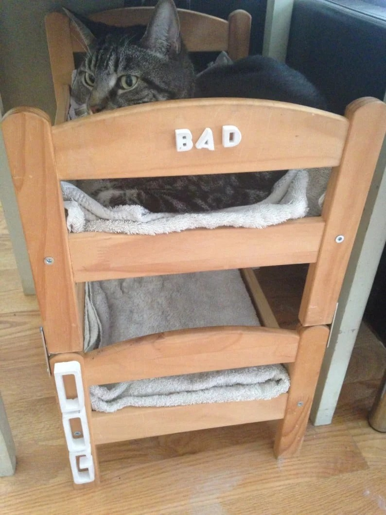 Can a dog and a cat be bunk bed mates seems so ikea for Pet bunk bed gallery