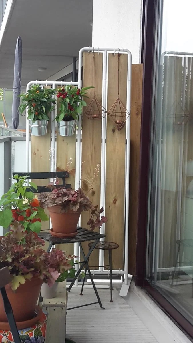 Privacy screen with plants