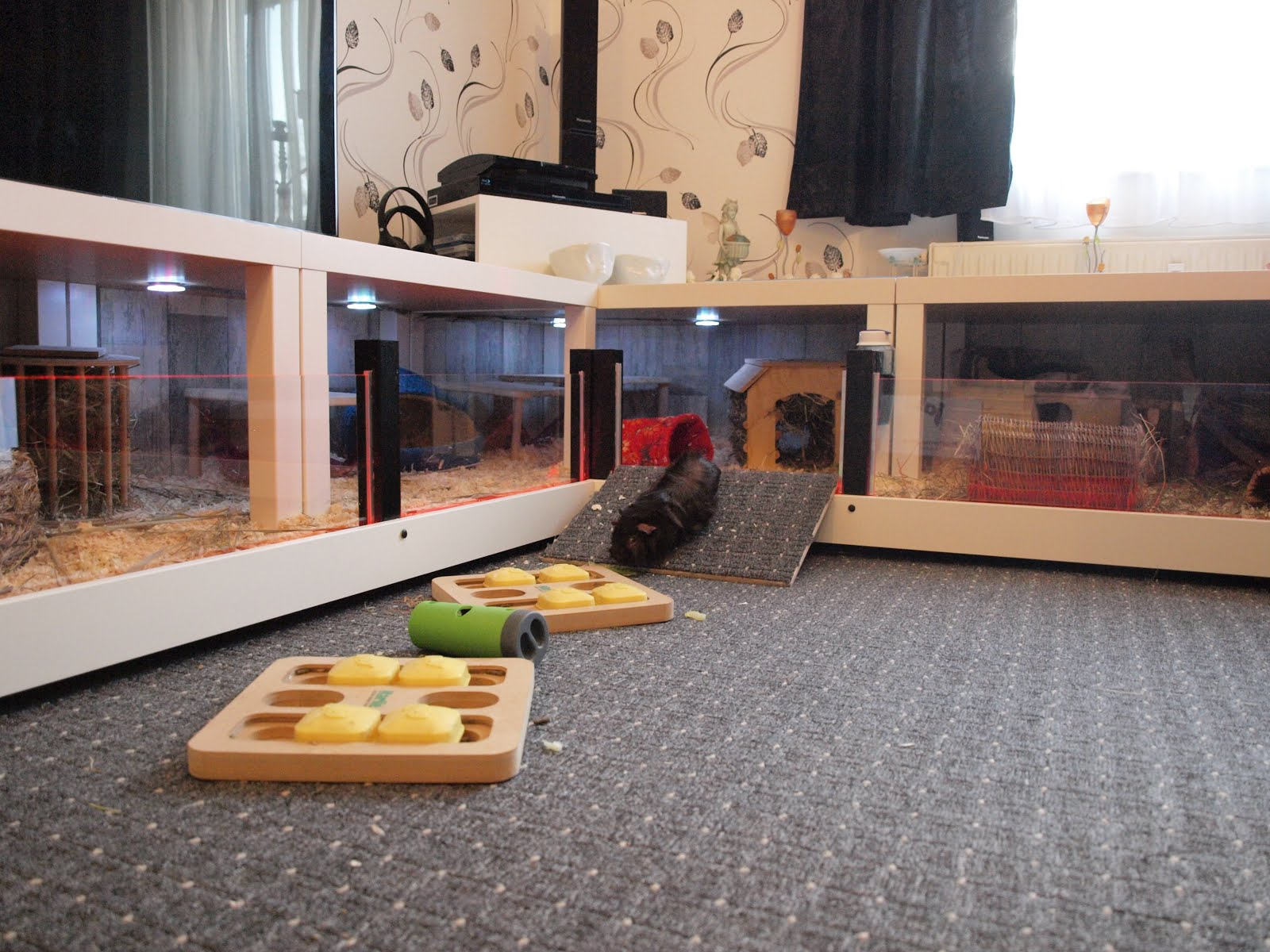 Modern guinea pig cage ikea hackers for How to guinea pig cage