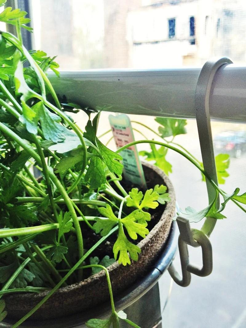 Window Herb Garden - IKEA Hackers