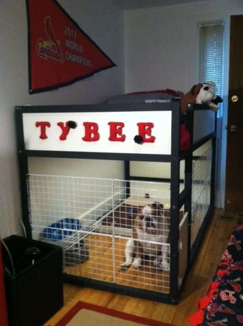 the dog suite ikea hackers. Black Bedroom Furniture Sets. Home Design Ideas