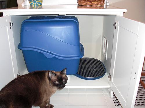 Flaren stealth cat litter box - IKEA Hackers