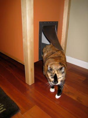 Big Roomy Cat Litter Ikea Hackers
