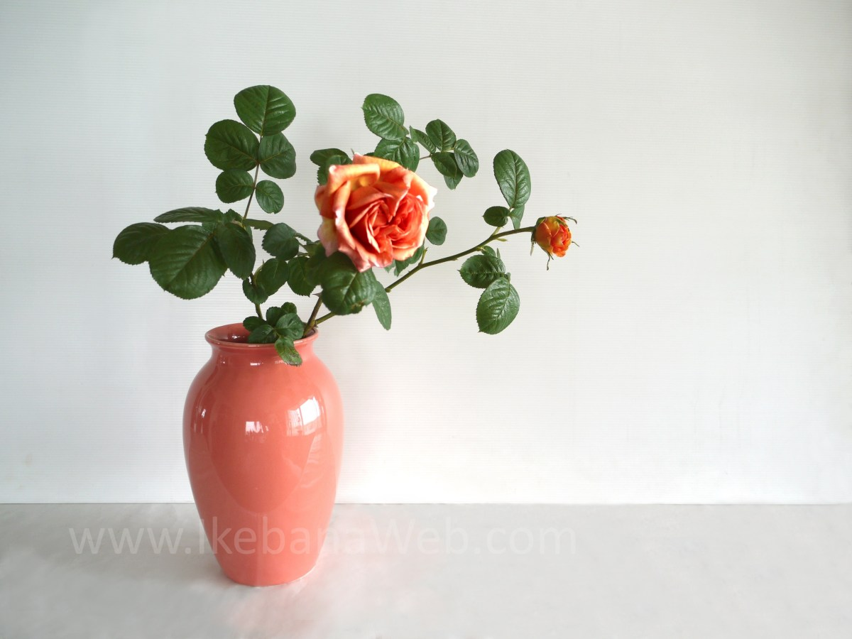 3 Main Elements of Ikebana Flower Arrangements: #3 Color