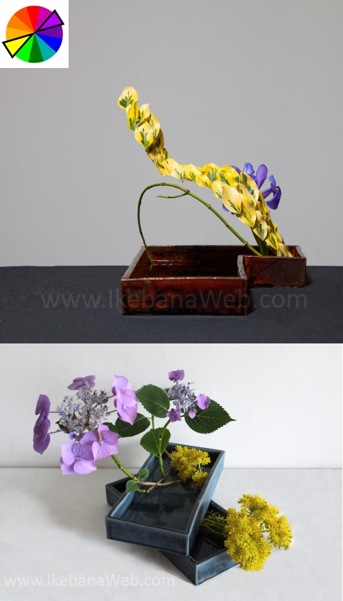 Opposite colors Sogetsu Ikebana arrangements Ekaterina Seehaus ikebanaweb.com