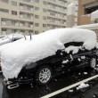 車、雪下ろし、道具、方法