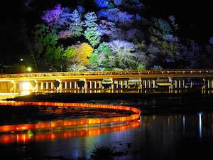 京都 イルミネーション ランキング 関西 人気 スポット、1