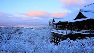 冬 京都 おすすめ デート スポット ランキング 4