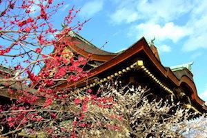 冬 京都 おすすめ デート スポット ランキング 2