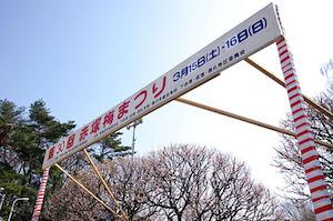 ホワイトデー 東京 デート イベント おすすめ 4