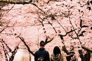春 デート カップル 人気 スポット ランキング 6