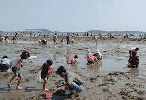 潮干狩り 関東 おすすめ スポット 人気 穴場 5