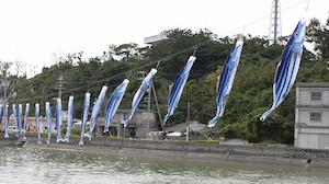 5月 沖縄 旅行 気温 6